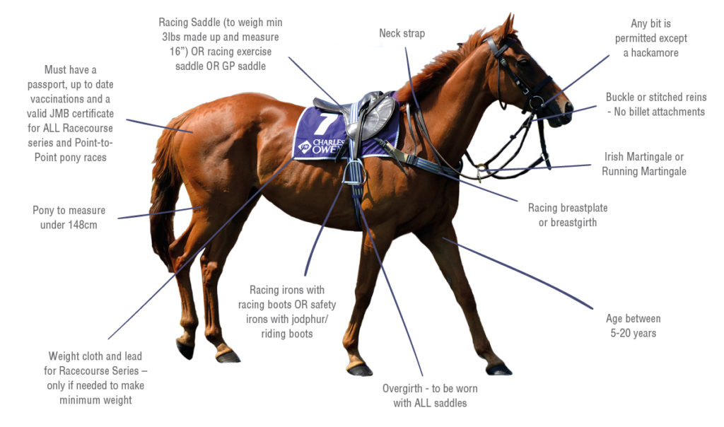 Horse-Poster