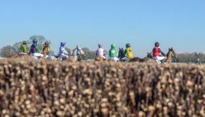 Pony race start – Higham